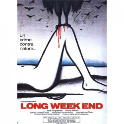 Affiche Long week-end