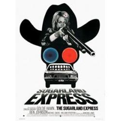 Affiche Sugarland express