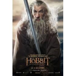 Affiche Le Hobbit, la...