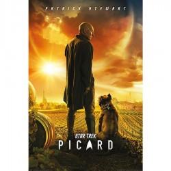 POSTER Star Trek Picard