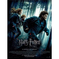 Affiche 60x40cm - Harry...